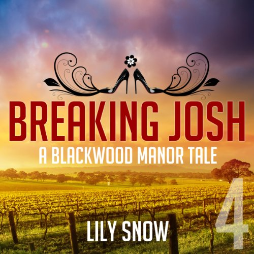 Breaking Josh, 4 audiobook cover art