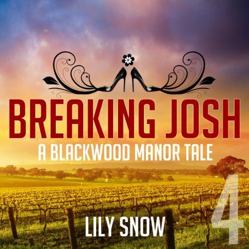 Breaking Josh, 4 cover art