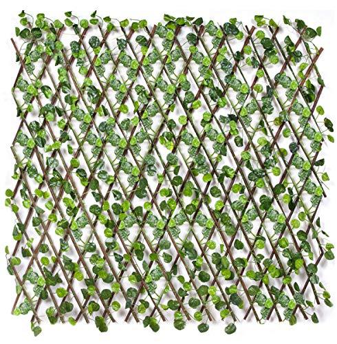 La top 10 traliccio con foglie nel 2021