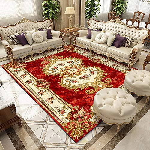 Elegant Palace Flower Print Area Rugs Carpet Floor Mat Chair Mat Door Mat Washable Non-Slip Indoor Outdoor Living Room Bedroom Hallways Kitchen Decoration Carpet Rugs Pads (red A,80 x120 cm)
