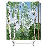 AI XIN SHOP Badezimmer- 3D Pappel-Baum Premium Wasserdichtes Mehltau-widerstandsfähiges Anti-Bakterien-Polyester-Badezimmer-Duschvorhänge, Haken eingeschlossen (größe : 2 * 2m)