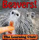 Beavers! Learn About Beavers And Learn To Read - The Learning Club! (45+ Photos of Beavers) (English Edition)