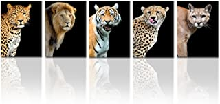 Best leopard print pictures free Reviews