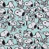 Baumwolljersey Peanuts Happy Snoopy mint - Preis gilt für
