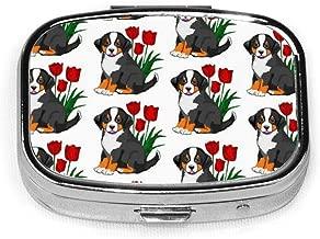 Bernese Mountain Dog Pill Boxes, Portable Rectangular Metal Silver Pills Case, Compact 2 Space, Pill Cases For Travel/Pocket/Purse