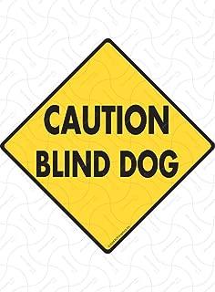 SignsWithAnAttitude Caution! Blind Dog Exterior Aluminum Dog Sign - 12
