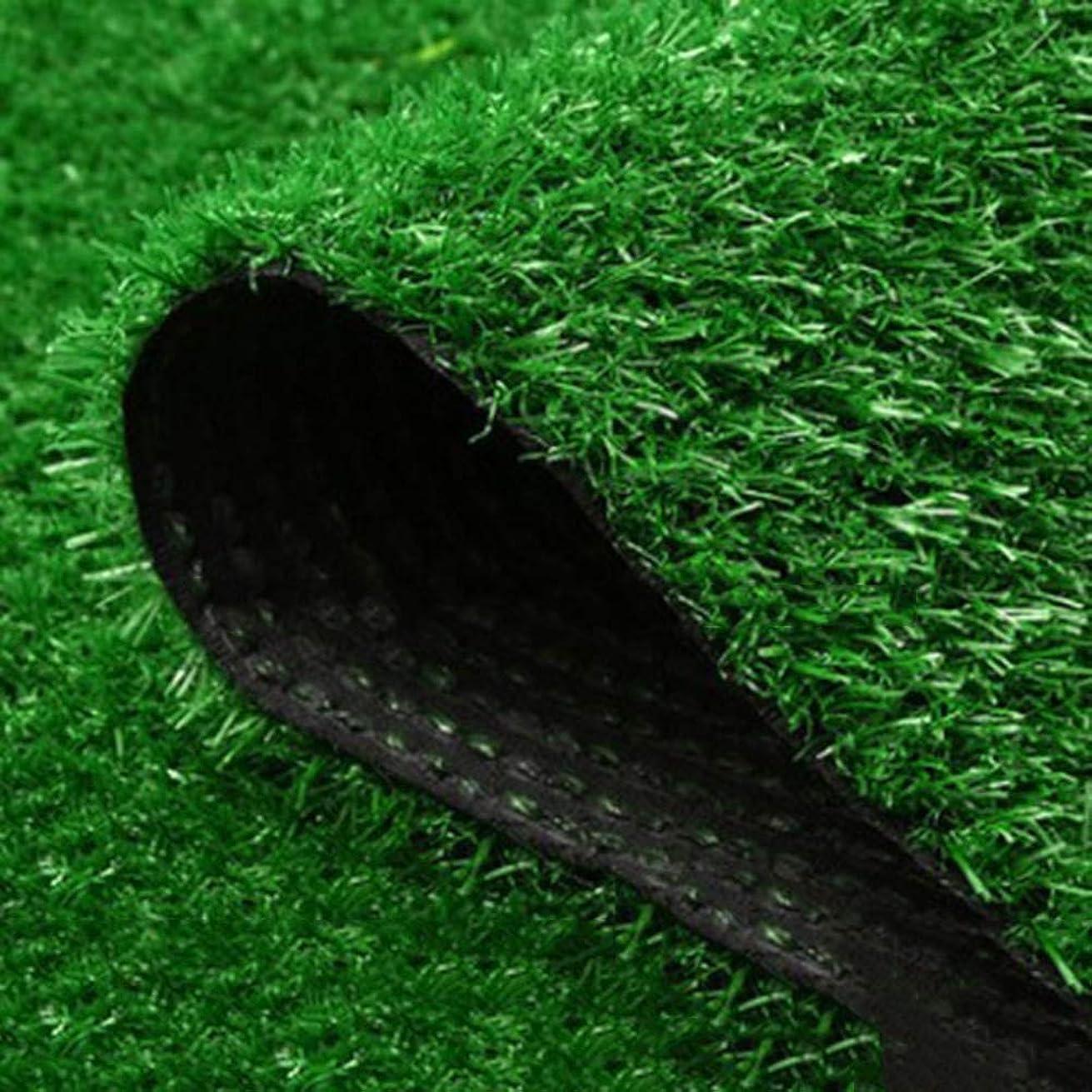 キャリア水没海高密度 人工偽の草,15 Mm 厚く 現実的 合成芝生 排水の穴 ターフマット テラスのため バルコニー ペットターフ-グリーン 200x100cm(79x39inch)