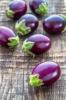Portal Cool Mini Bambino Eggplant 10 Seeds, Heirloom, Dwarf Plants, Never Bitter Fruits, Harves