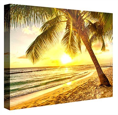 CCRETROILUMINADOS Paraíso Tropical Cuadro con luz, Acrílico, Multicolor, 80x80x5.3 cm