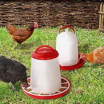 IDMarket - Lot mangeoire 3 kg et Abreuvoir 3L pour Poules et volailles