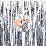 2PCS Cortinas de Oropel,Foil Curtains,Metálicas Fringe Cortinas,Fringe Shimmer Cortina,Fiesta de la Boda Fiesta de Cumpleaños,Decoraciones Bricolaje Ventana/Puerta Apoyos Foto/Fotomatón(Plata,1x2.5m)