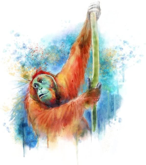 Orangutan - Watercolor 36x54 Super sale Very popular Giclee Print Wall Gallery Decor T
