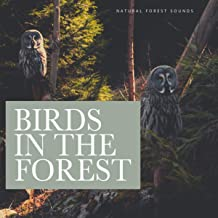 Birds in the Forests
