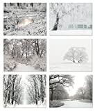 Winter Scenes Blank Note Cards - Greeting Cards with Envelopes - 6 Unique Designs - 5.5'x4.25' (12 Pack)