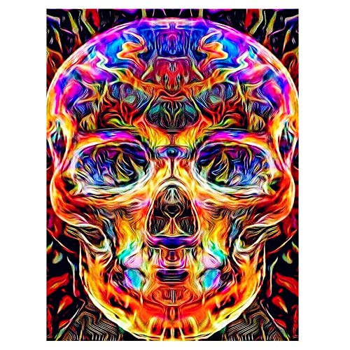 HuaCan 5D Diamond Painting Kits for Adults Full Square Drill DIY Halloween Diamond Painting by Number Kit Mosaic Canvas Art Home Wall Decor Gift Skull 30x40cm/11.8x15.7in