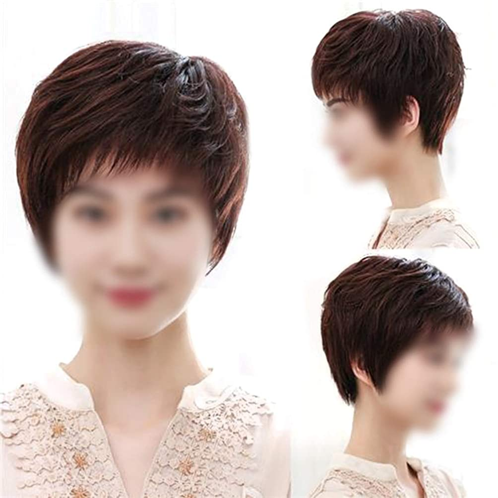 補助固体大破Yrattary 女性のダークブラウンのショートヘア中年の手編みリアルヘアヘアナチュラルリアルなかつら女性の合成かつらレースかつらロールプレイングかつら (色 : Natural black)