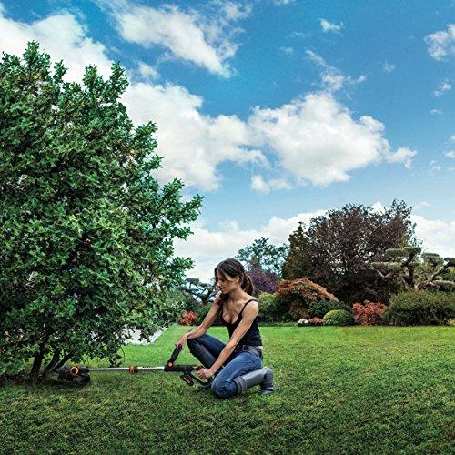 Chica cortando la maleza de un pequeño árbol utilizando la Desbrozadora a batería WORX WG163E.9