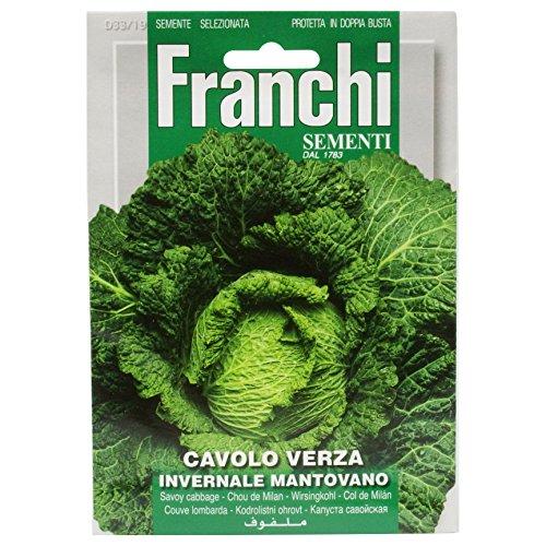 Seeds of Italy Ltd-Sementi (Cavolo Cappuccio Bianco)