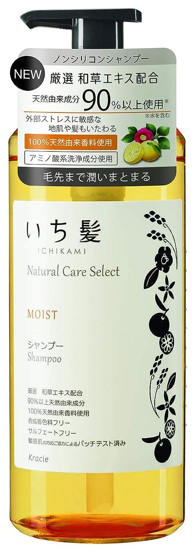 激しいすすり泣きおいしいいち髪ナチュラルケアセレクト モイスト(毛先まで潤いまとまる)シャンプーポンプ480mL シトラスフローラルの香り