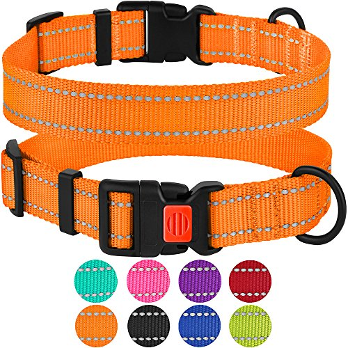 CollarDirect Reflective Dog Collar with Buckle Adjustable Safety Nylon Collars for Dogs Small Medium Large Pink Black Red Blue Purple Green Orange (Neck Fit 14'-18', Orange)