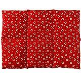Coussin aux noyaux de cerises 40x30 - Coussin chauffant pour le dos - Bouillotte sèche - Compresse chaude ou froide (6 compartiments; Design: Rouge avec des coeurs)