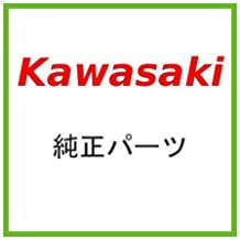 Kawasaki CASE-Pump 59336-3710