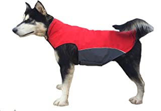 Best dog jackets for large dogs Reviews