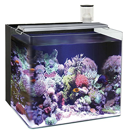 Ocean Free AT641 A Nano Aquarium Marine