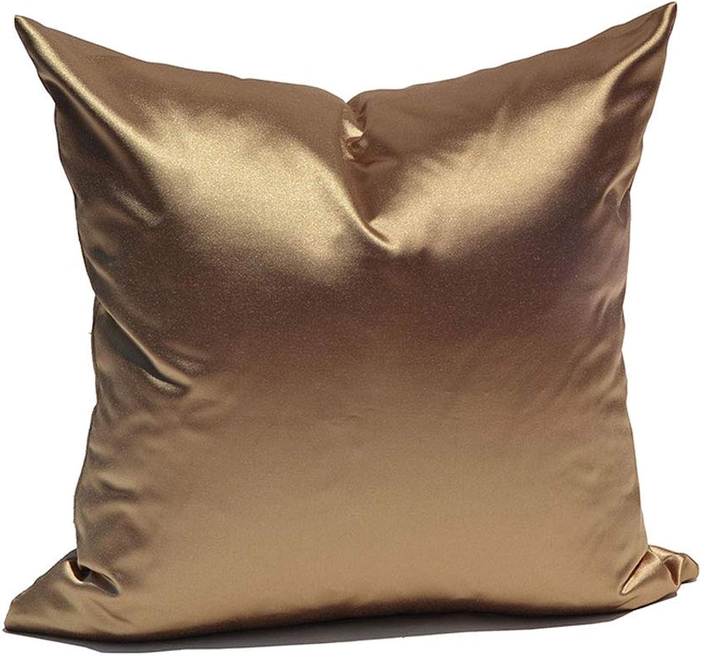 JKL Oreiller d'or simple, oreiller de sofa, oreiller lombaire de dossier de matelas de bureau de sofa de salon (Couleur   A60x60cm)