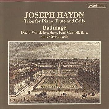 Haydn: Trios for Piano, Flute & Cello