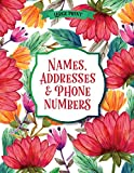 Large Print Names & Address Book: Flowers