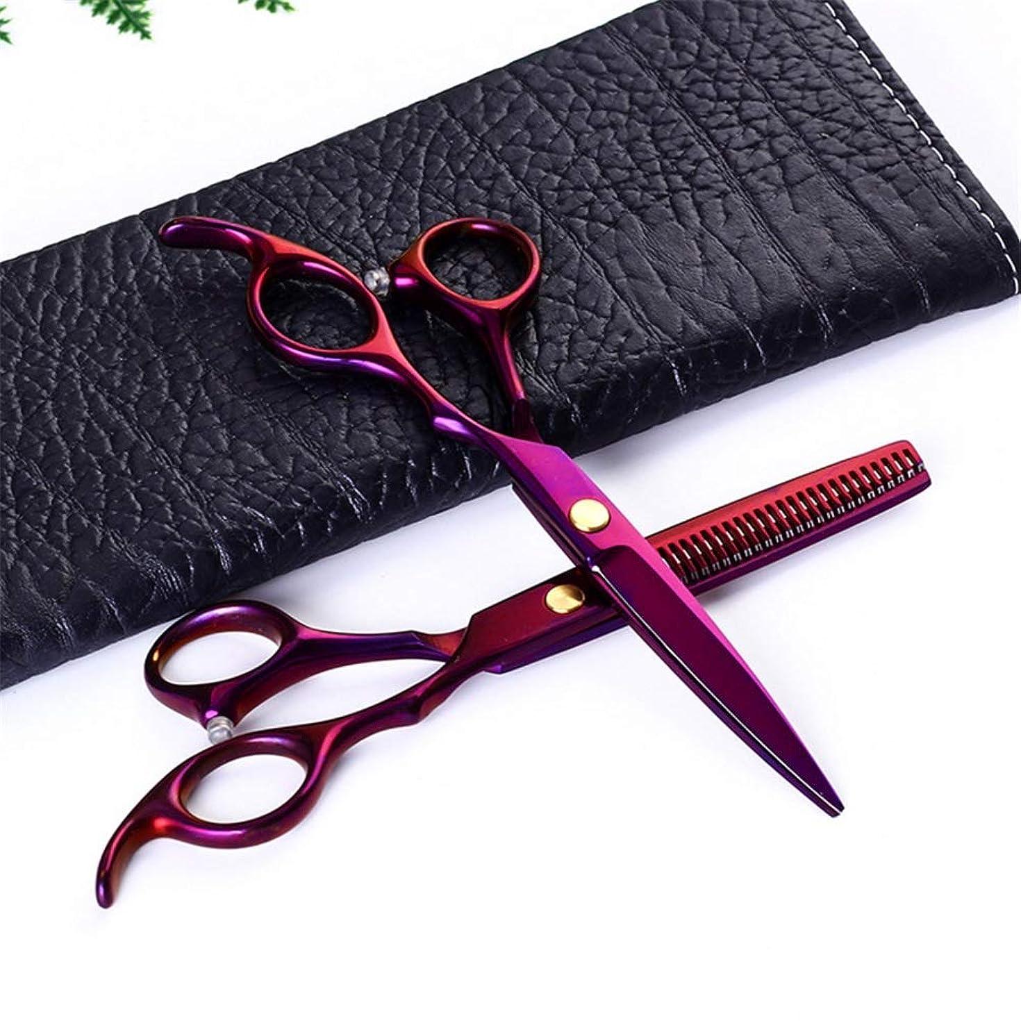 気楽な助けになる場合理髪はさみメッキパープルシャープスタイリングカミソリ髪はさみカッティングシザーシニングシザーとくし6.0 in