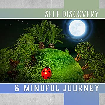 Self Discovery & Mindful Journey: Search Your True Nature, Soul Vibrations, Harmony & Meditation, Flow of Light