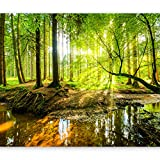 artgeist Wall Mural Forest 116'x83' XXL Peel and Stick Self-Adhesive Wallpaper Removable Large Sticker Foil Wall Decor Print Picture Image Design c-B-0241-a-a