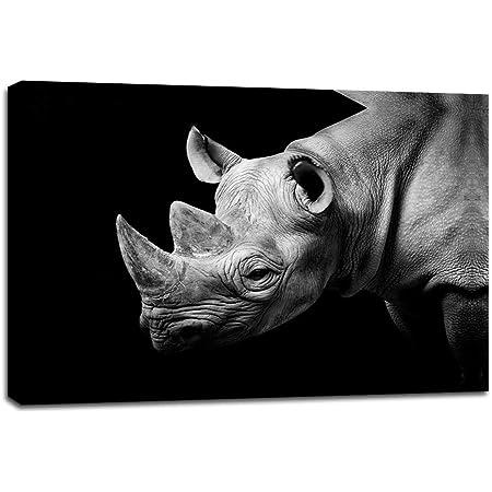 Pintura De Animales Moderna En Blanco Y Negro Rinoceronte Cuadros En Lienzo Para Sala De Estar Decoración De La Pared Obras De Arte Hd Impresiones Para El Hogar Con Enmarcado Estirado