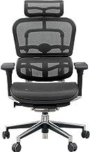 エルゴヒューマン ベーシック オフィスチェア ブラック ヘッドレスト付き エラストメリックメッシュ ergohuman BASIC EH-HAM KM-11