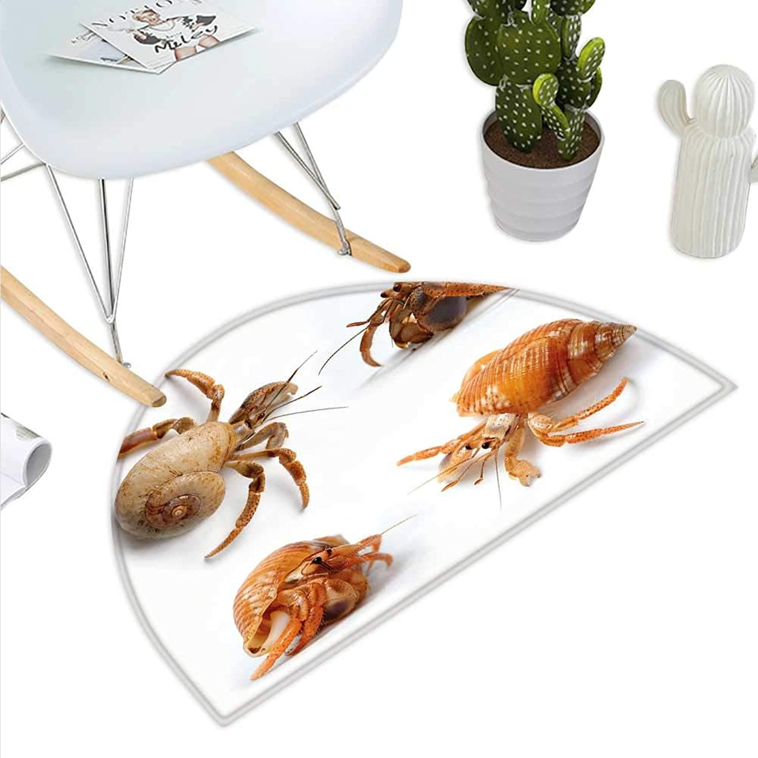 Crabs Semicircle Doormat Sea Animals Theme Set of Hermit Crabs from Caribbean Seascape Digital Print Halfmoon doormats H 35.4  xD 53.1  Marigold and White