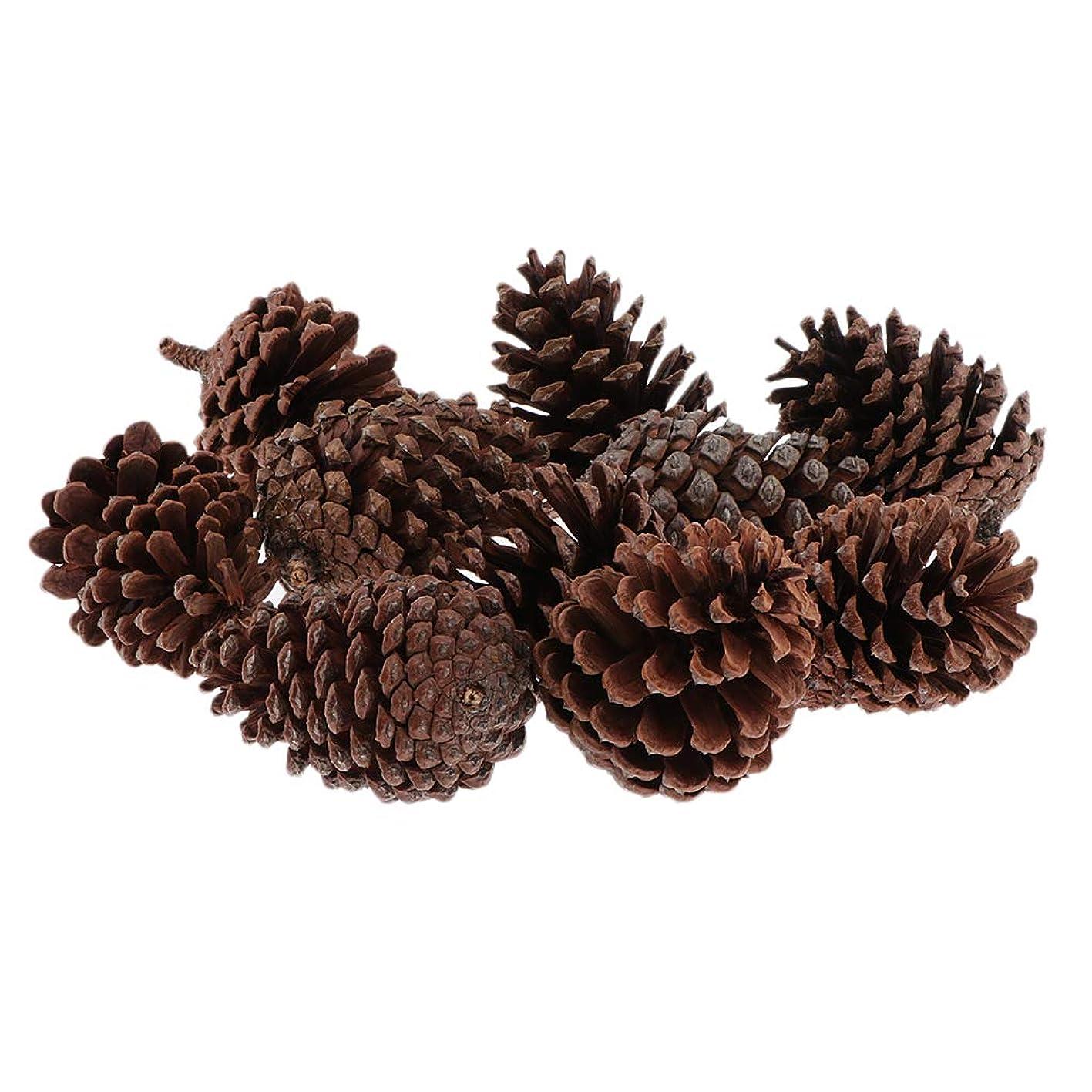 通常嫌いうん天然 松かさ 松ぼっくり クリスマス クリスマスツリー 飾り オーナメント 装飾クラフト 材料 全3選択 - 6-8CM