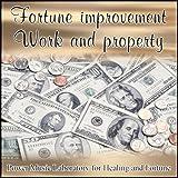 仕事と財産の運勢向上