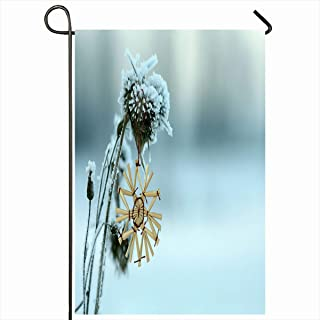 Ahawoso Garden Flag 12x18 Inches Old Yellow Plant Winter Snowflake On Faded Nature Clean Color Culture Cut Design Decorative Seasonal Double Sided Home House Outdoor Yard Sign