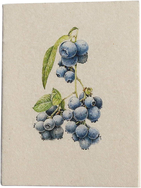 Handmade Pocket Diary, blueeberry Botanical Illustration