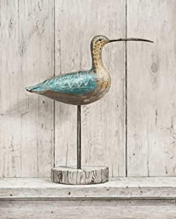 Posterazzi Collection Curlew Poster Print by Arnie Fisk (24 x 20)