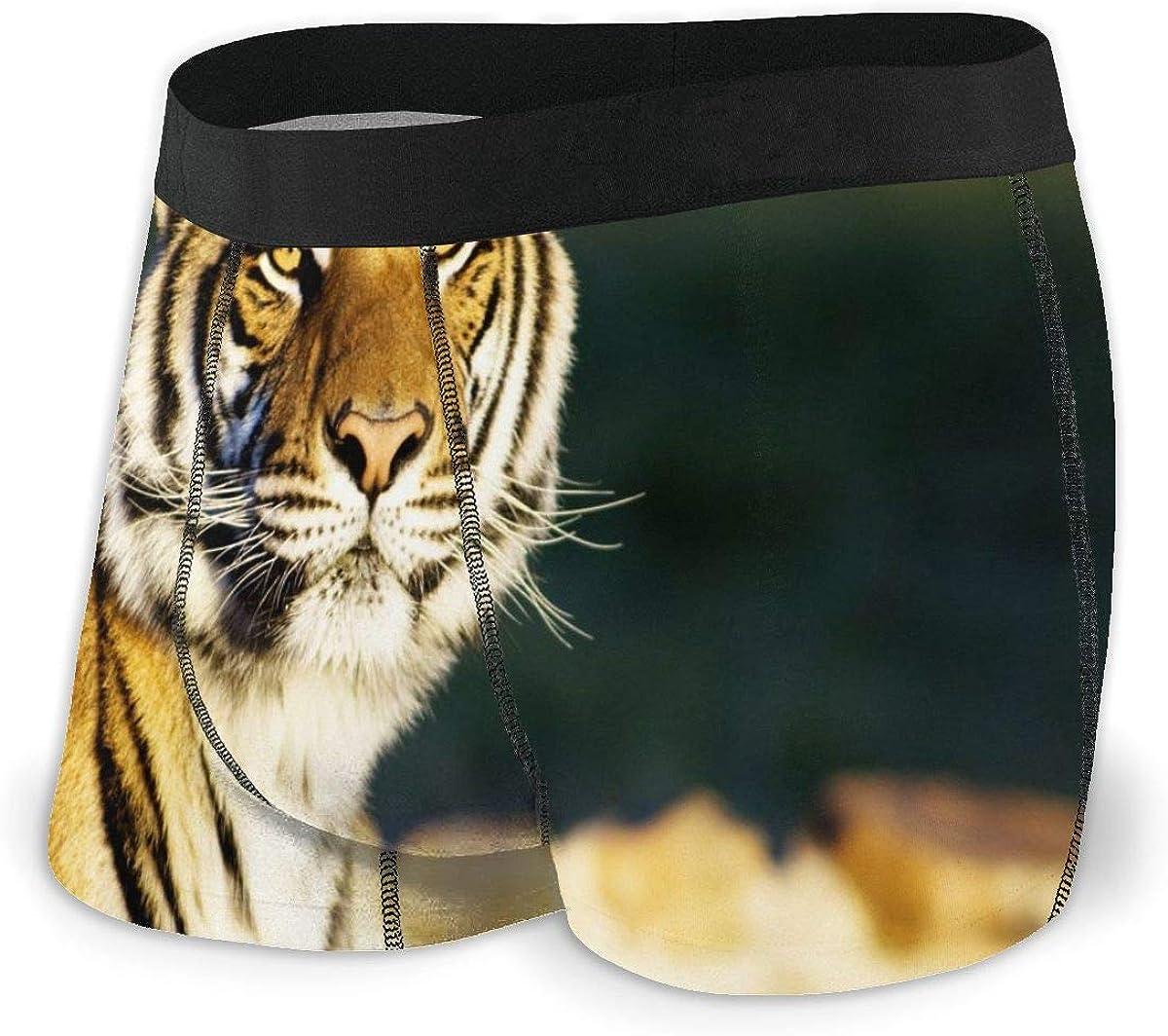 Mens Boxer Briefs Funny Tiger Closeup Breathable Underwear