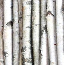 Wilson Enterprises White Birch Poles, Natural, Kiln Dried, Home Decor Birch (Set of 2 Poles, 8 ft Long x 3-4 inch Diameter)