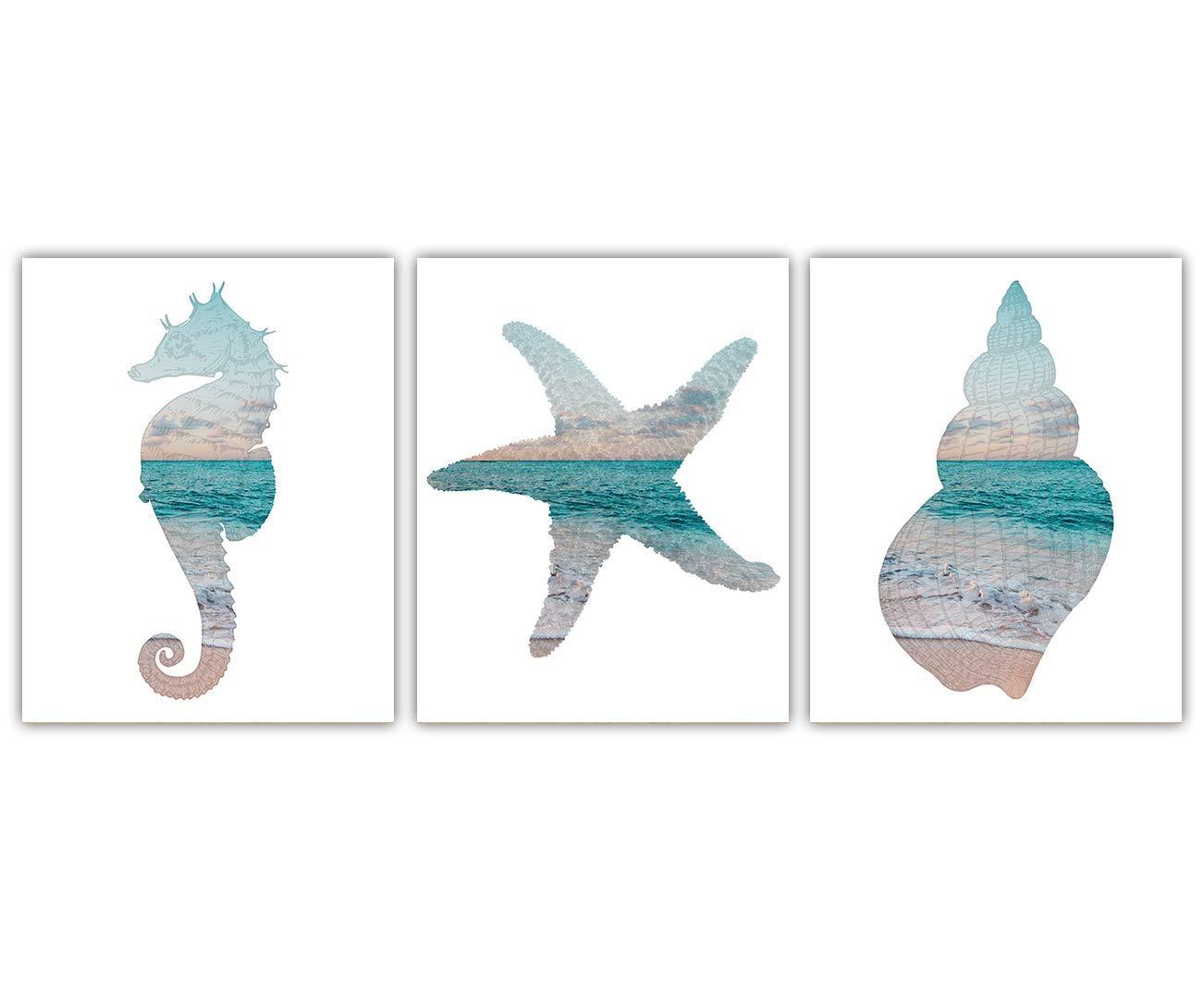 Starfish Seahorse Sea Shell Wall free shipping Print: Boston Mall Unique Beach Art Hous