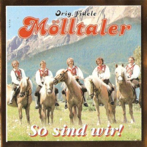 Ein altes Haus und ein paar Pferde (Radio Mix)