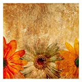 Bilderwelten Fotomural - Vintage Flowermix - Mural cuadrado papel pintado fotomurales murales pared papel para pared foto 3D mural pared barato decorativo, Dimensión Alto x Ancho: 240cm x 240cm