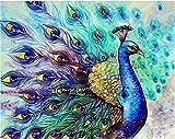 Pintar por números para adultos animales pavo real - lienzos para pintar por números con pinceles y colores brillantes - cuadro de pinturas con numeros sobre lienzo dibujado adultos y niños
