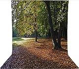 Fondo de fotografía de 3 x 5 pies, fondo tranquilo Tiergarten Berlin microfibra de tela de tela de forro polar, con bolsillo para barra (solo telón de fondo) para fotografía fotografía fotografía
