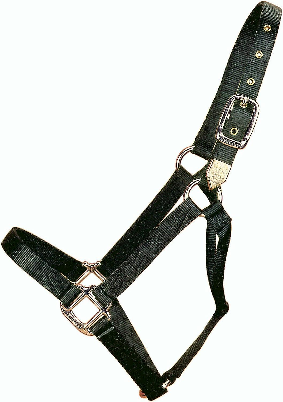 Hamilton 1Inch Nylon Horse Halter, XLarge, Black